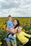 Mother with her daughters in the with sunflowers. Royalty Free Stock Photo