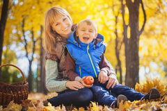 Mother and her kid have fun in the yellow leaves Royalty Free Stock Images