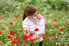 Mother and her newborn baby in a beautiful flower field Stock Image