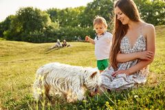 Mother with her son playing with a dog Royalty Free Stock Photo
