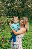 Mother with her son under the apple tree. Mom and son walk in the park outside the city in the evening Royalty Free Stock Image