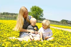Mother and Her Sons in Dandelion Field Royalty Free Stock Photography