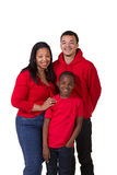 A mother and her 2 sons. On white Royalty Free Stock Images
