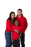 A mother and her 2 sons. On white Royalty Free Stock Photo