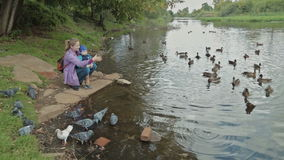Mother and his little son feeding ducks at autumn. HD stock footage