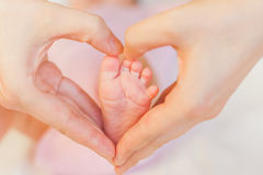 Mother holding baby feet at hands Royalty Free Stock Image