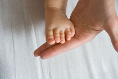 Mother is holding baby foot. Mother is holding her baby small foot Stock Photography