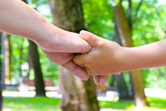 Mother holding a hand of her child`s on the road in the park, Cl. Ose up. The concept of parent support, assistance and attention to children Royalty Free Stock Image