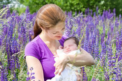Mother holding her newborn baby in flower field Stock Images