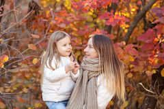 Mother holds daughter on hands. Royalty Free Stock Image