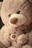 Mother hugging her adorable son teddy bear royalty free stock image