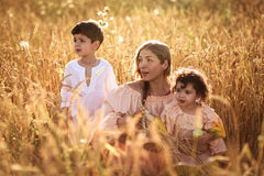 Mother hugging her son and daughter in a wheat field Royalty Free Stock Photos