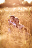Mother hugging her son and daughter in a wheat field Royalty Free Stock Photography