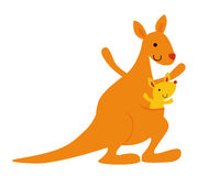 Mother kangaroo with her little baby Stock Image