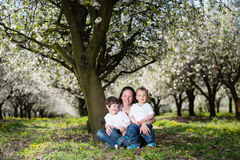 Mother with kids in cherry blossom garden Royalty Free Stock Images