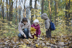 Mother And Kids Collecting Leaves In Park Stock Photo