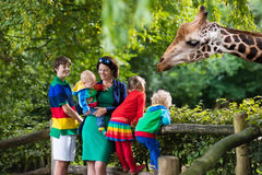 Mother and kids feeding giraffe at the zoo. Mother and children, school student, little toddler boy, preschool girl and baby watching and feeding giraffe animals royalty free stock photos