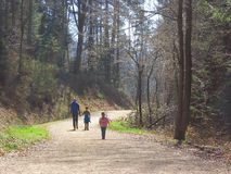Mother with kids hiking in forest royalty free stock image