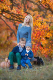 Mother lady womanwithTwo handsome cute brothers sitting on pumpkin in autumn forest alone stock images
