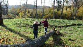 Mother lead her daughter hand broken tree trunk autumn. Mother lead her daughter with hand on broken tree trunk in autumn stock video