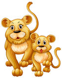 Mother lion and little cub Stock Photos