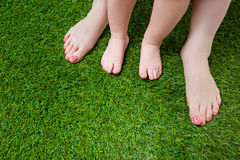 Mother and little baby legs standing  on grass Stock Images