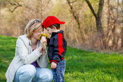 Mother and little boy with dandelion Stock Images