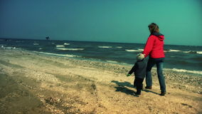 Mother and little boy running on the beach, scaring seagulls stock video footage