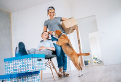 Mother with little son and beagle dog in new apartment after ren Stock Photo