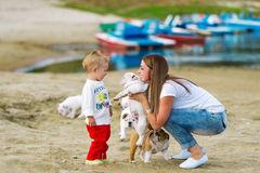 Mother and the little son play with a puppy on the sands at the river stock photos