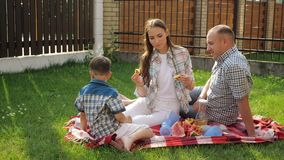 Mother with brown hair sits with handsome father and boys. Mother with loose brown hair sits with handsome father feeding sons with water melon on checkered stock footage
