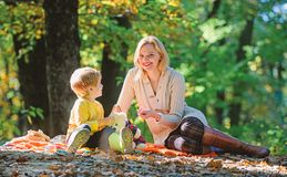Mother love her small boy child. Sunny weather. Healthy food. Spring mood. Happy family day. Family picnic. Mothers day stock images