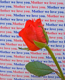 Mother we love you message with rose. Royalty Free Stock Photography