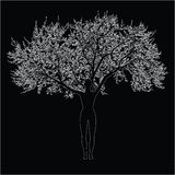Mother nature. Black and white  illustration of a tree-woman figure Royalty Free Stock Photography