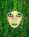 Mother nature. Face made with natural items like leaves and grass Stock Photography