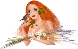Mother nature. Vector illustration of beautiful girl with long, red hair and robin. She have in her arm a lavender bouquet with ears of wheat and daisy. She is Royalty Free Stock Photo