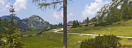 Mother Nature - Landscape of the Tauplitz -Alm in Stock Photography