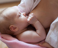 Mother with newborn Royalty Free Stock Photos