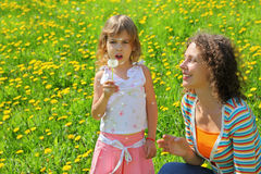 Mother plays with girl which breath on  dandelion Stock Images