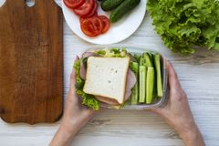 Mother prepared lunch box. Top view. Healthy food stock images