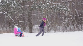 Mother pulling childrens on sled through snow in winter forest. Slow motion. The mother pulling childrens on sled through snow in winter forest. Slow motion stock video