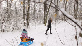 Mother pulling daughter on sledge in winter wood. stock video