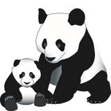 Mother and Pup Panda Stock Photography