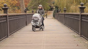 Mother pushing buggy on a bridge in park Stock Image