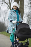 Mother Pushing Stroller In Park Royalty Free Stock Photos