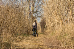 Mother pushing stroller through scenic wetland landsape of nature reserve of river mouth Isonzo. Mother with stroller during a sunday walk through scenic wetland Stock Photography