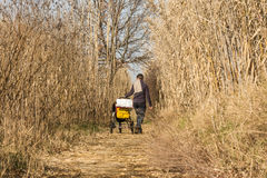 Mother pushing stroller through scenic wetland landsape of nature reserve of river mouth Isonzo. Mother with stroller during a sunday walk through scenic wetland Royalty Free Stock Photo