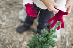 Mother Putting Red Mittens On Child Outdoors Stock Photos