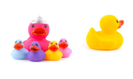 Mother rubber duck with children, with father leaving the group Stock Photos