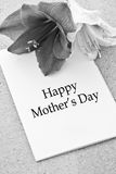 Mother's Day Appreciation Royalty Free Stock Photo